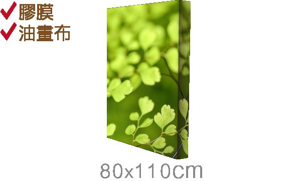 直80x110cm-epson無框