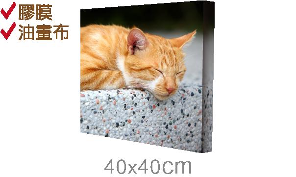 40x40cm-epson無框