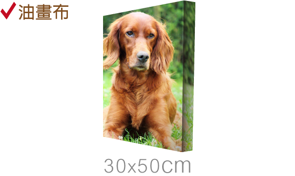 直30x50cm-epson無框