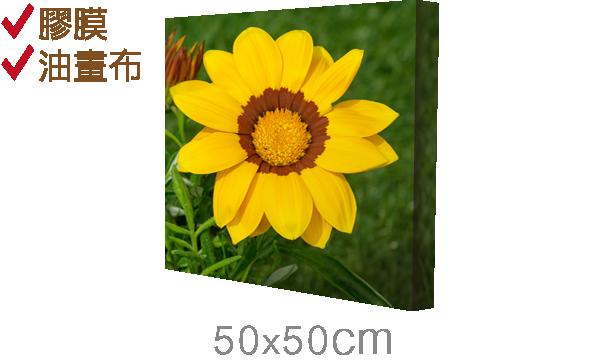 50x50cm-epson無框