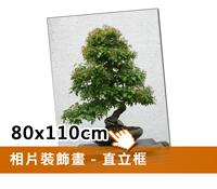 EPSON無框裝飾畫(80x110cm)