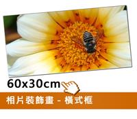 EPSON無框裝飾畫(60x30cm)