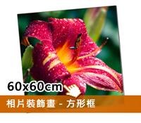 EPSON無框裝飾畫(60x60cm)