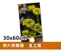 EPSON無框裝飾畫(30x60cm)